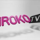iROKOtv user base grows to 500 000