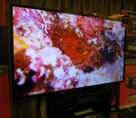 Sharp yesterday afternoon unveiled their 90-inch television in South Africa (image: Charlie Fripp)