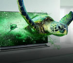 3D televisions are becoming a thing of the past.