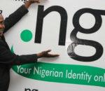 Nigeria: .ng domain registrations hit 100,000