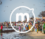 mSurvey_3