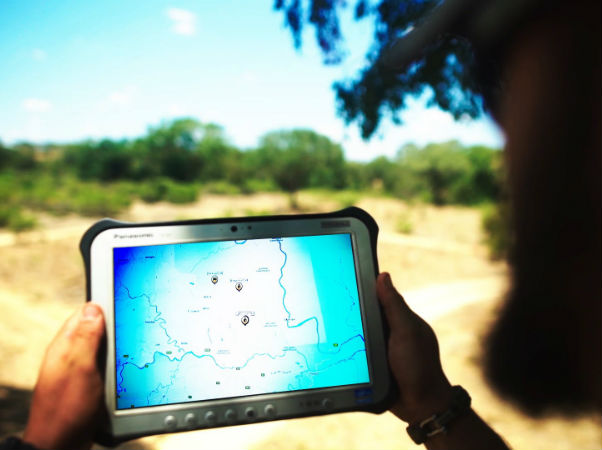 Dimension Data, Cisco expand anti-poaching programme in Africa