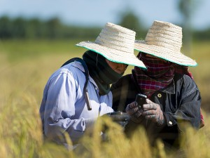 Vodacom Foundation equips female farmers with digital skills
