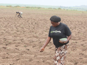 Nigerian digital agritech platform awarded $325,000 grant from GSMA.