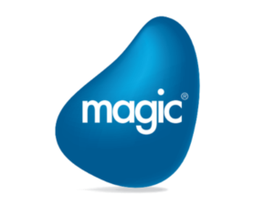 Magic Software Enterprises Ltd., is a global provider of enterprise-grade application development and business process integration software solutions