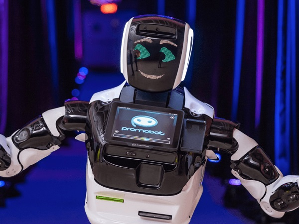 CES 2019: Robot struck down by self-driving Tesla
