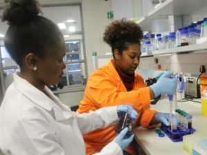 OneBio calls for applications to its First Incubation Programme