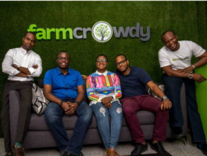 Farmcrowdy Group partners Livestock 247 to boost trading in Nigeria