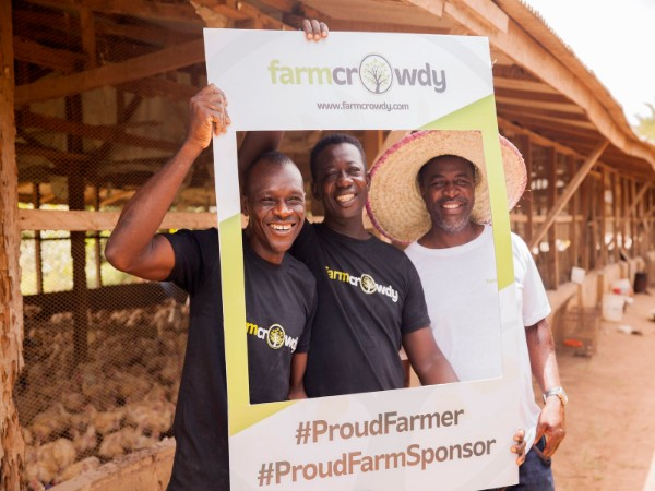 Farmers utilizing Farmcrowdy's programs. Image sourced from Farmcrowdy.